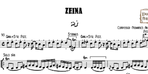 Zeina-AbdelWahab Music Notes