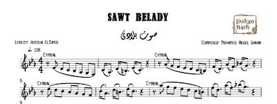 Sawt Belady - صوت بلادي
