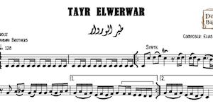 Tayr ElWerwar-Free طير الوروار